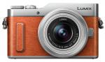 Accesorios para Panasonic Lumix DMC-GF10