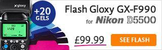Flash TTL for Nikon D5500